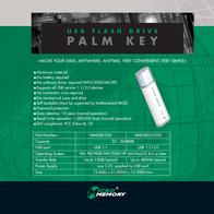 MicroMemory PALM KEY 256MB to USB 1.1 MMUSB/256 Leaflet