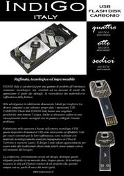Indigo 4GB USB2.0 MI-UDC4 Leaflet