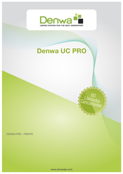 DENWA DW-PIP User Manual