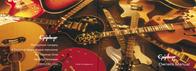 Gibson epiphone User Manual