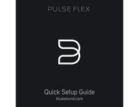 Bluesound Pulse Flex Owner's Manual